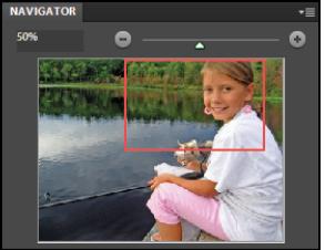 Команда Navigator в Photoshop
