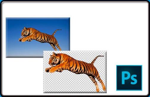 Как в Фотошопе сделать прозрачный фон для картинки