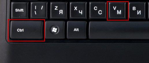 Сочетание клавиш Ctrl+V для вставки изображения