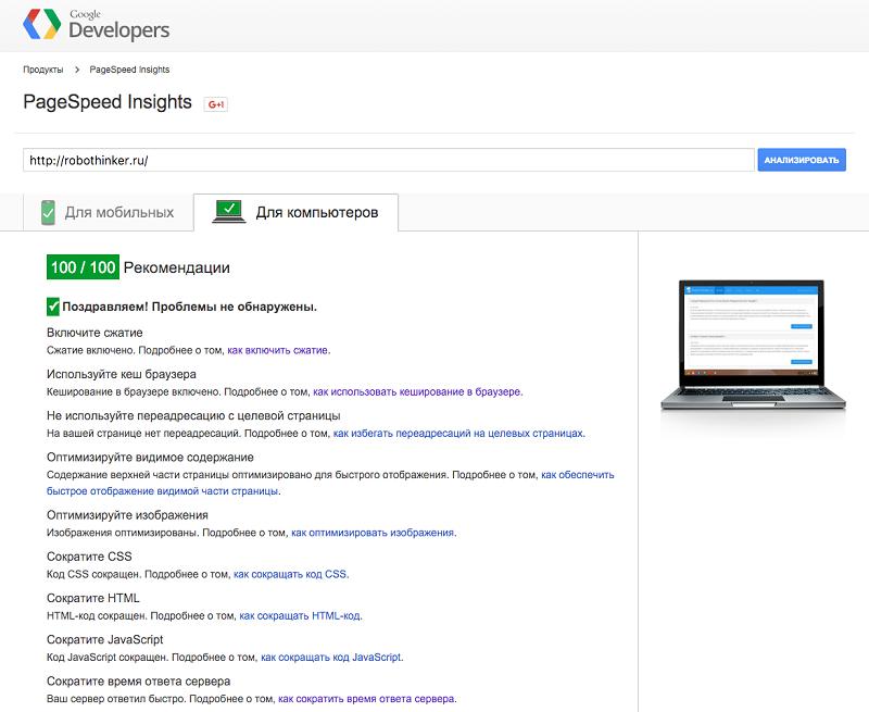 Скриншот к PageSpeed Insights