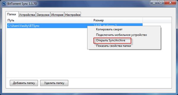 Пункт Открыть SyncArchive