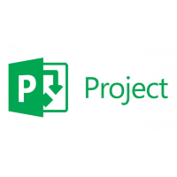 Project Professional 2016 SNGL OLP NL w1Project Server CAL [H30-05613]