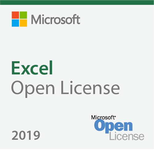 Excel 2019 Sngl OLP NL [065-08677]