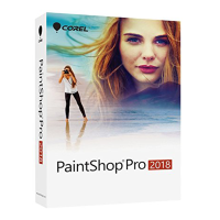 PaintShop Pro 2018 Corporate Edition Lic 251-500 [LCPSP2018ML4]