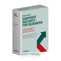 Kaspersky Endpoint Security для бизнеса Стандартный Russian Edition. 2 year Base License [KL4863RA*DS]