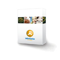 WinGate Professional 6 Concurrent Users [1512-23135-95]
